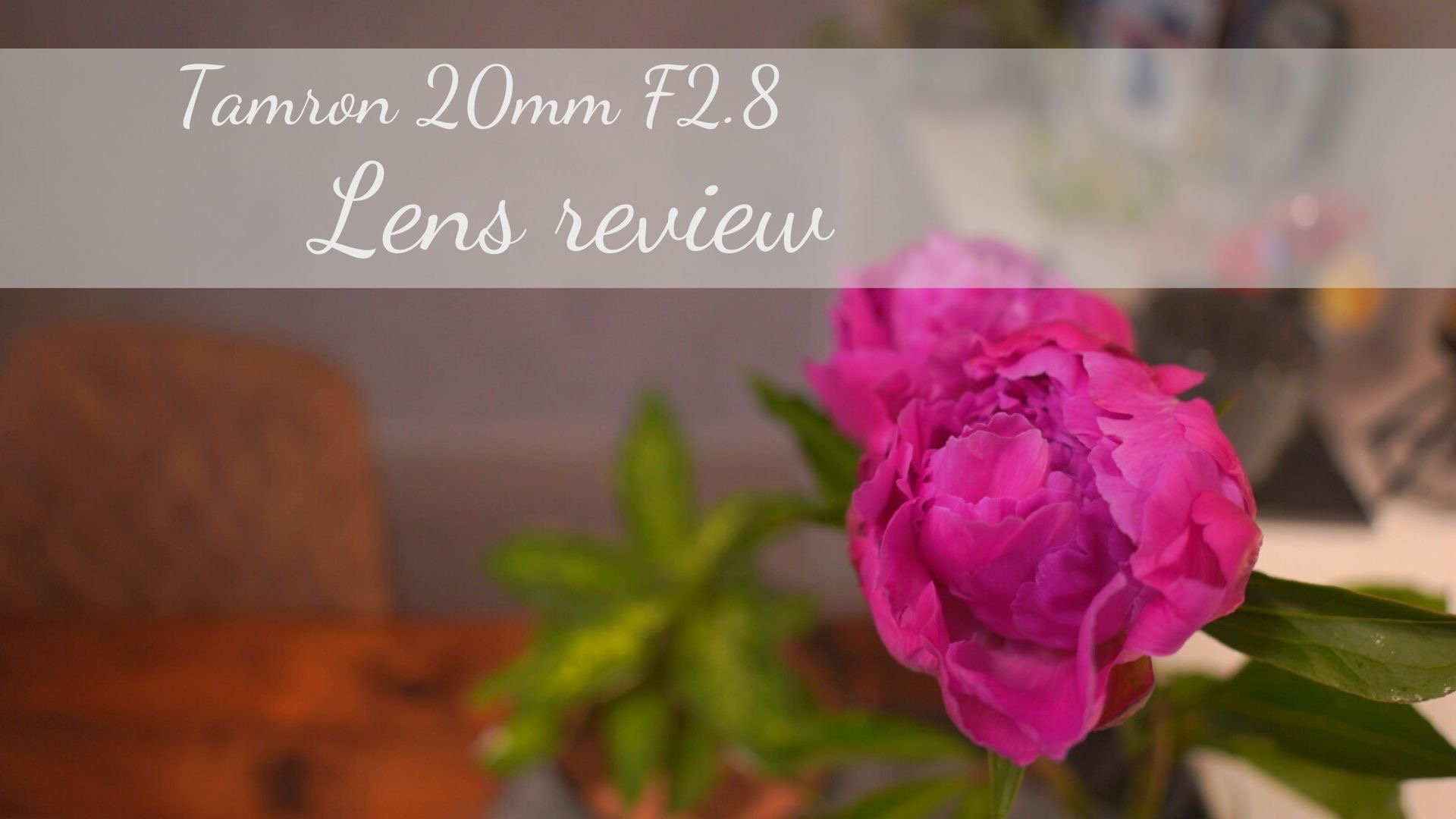 【Tamron】20mm F2.8 lens【1ヶ月使ってみた感想】
