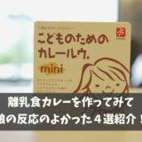 【レシピ】離乳食カレーの比較!【オススメ4選】